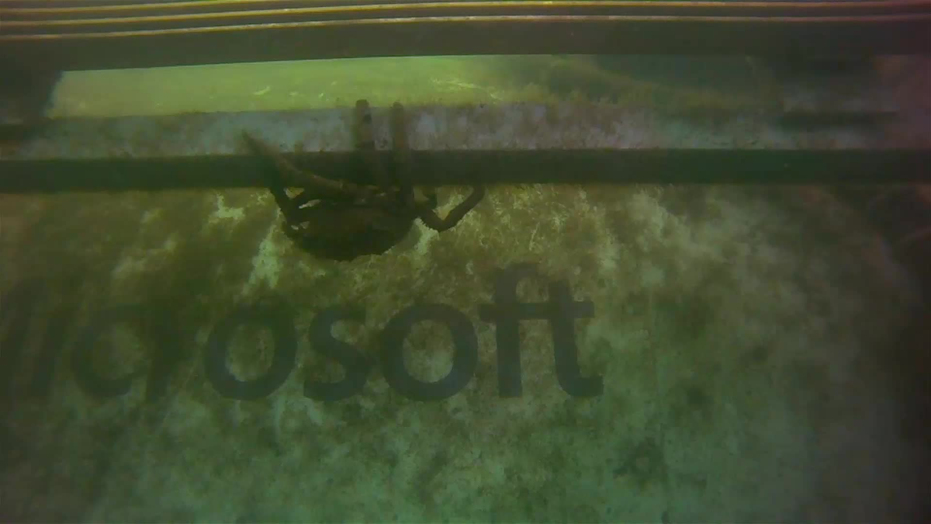 A crab crawls along the Leona Philpot, with the Microsoft logo in the background